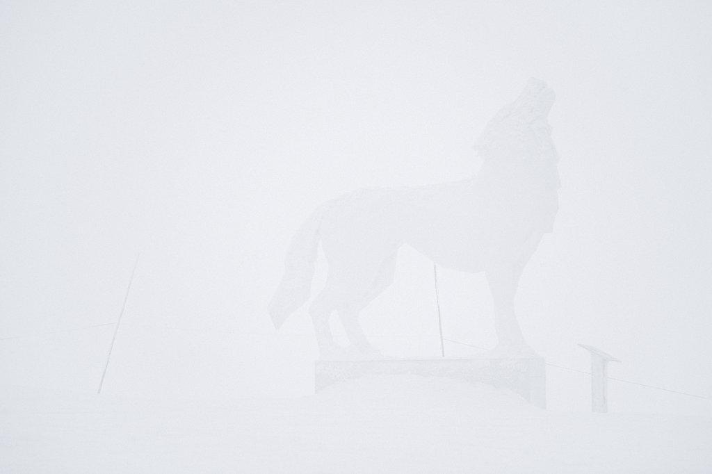 5-White-PhotoDavidANDRE.jpg